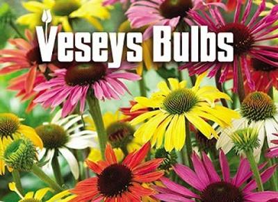 Bulb Sale Fundraister – Sept 4 –8