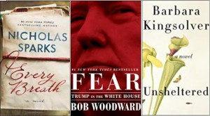 New book covers: Every breath, Fear: Trump in the White House; Unsheltered