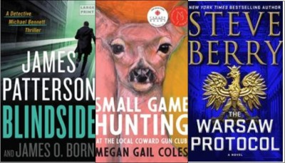 New Books: Blindside, Small game hunting at the local coward gun club; The Warsaw protocol