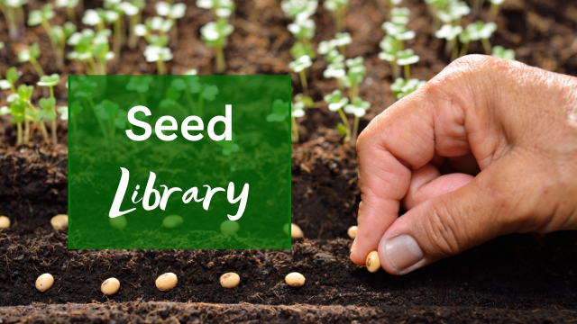 graphic for the Seed Library